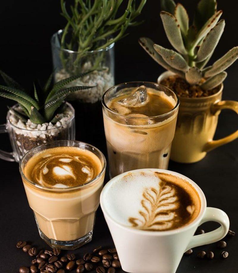 Catabolic Cafe